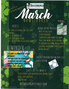 2020-March-Newsletter-BluebirdProperty