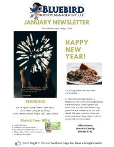 January 2021 Bluebird Property Newsletter